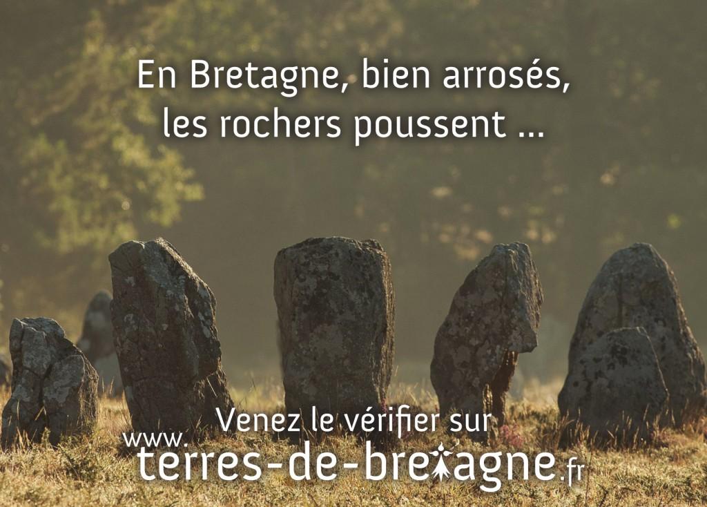 Terre de Bretagne - Week end en Bretagne - Les Menhirs