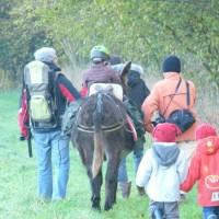 Ma famille au rythme de l'âne