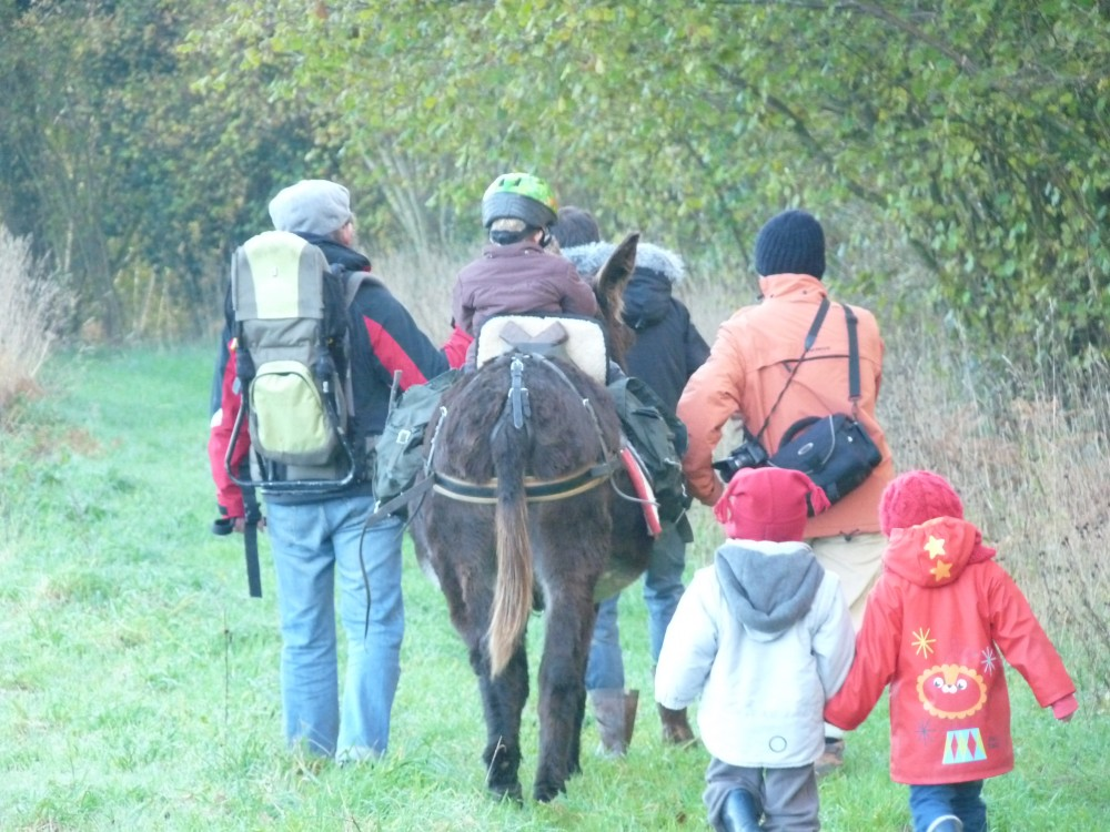 Randonnée avec les Anes de Min Guen - Terre de Bretagne