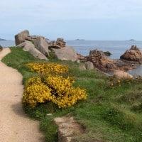 Sur les sentiers de la Côte de Granit Rose : De Paimpol à Ploumanac'h