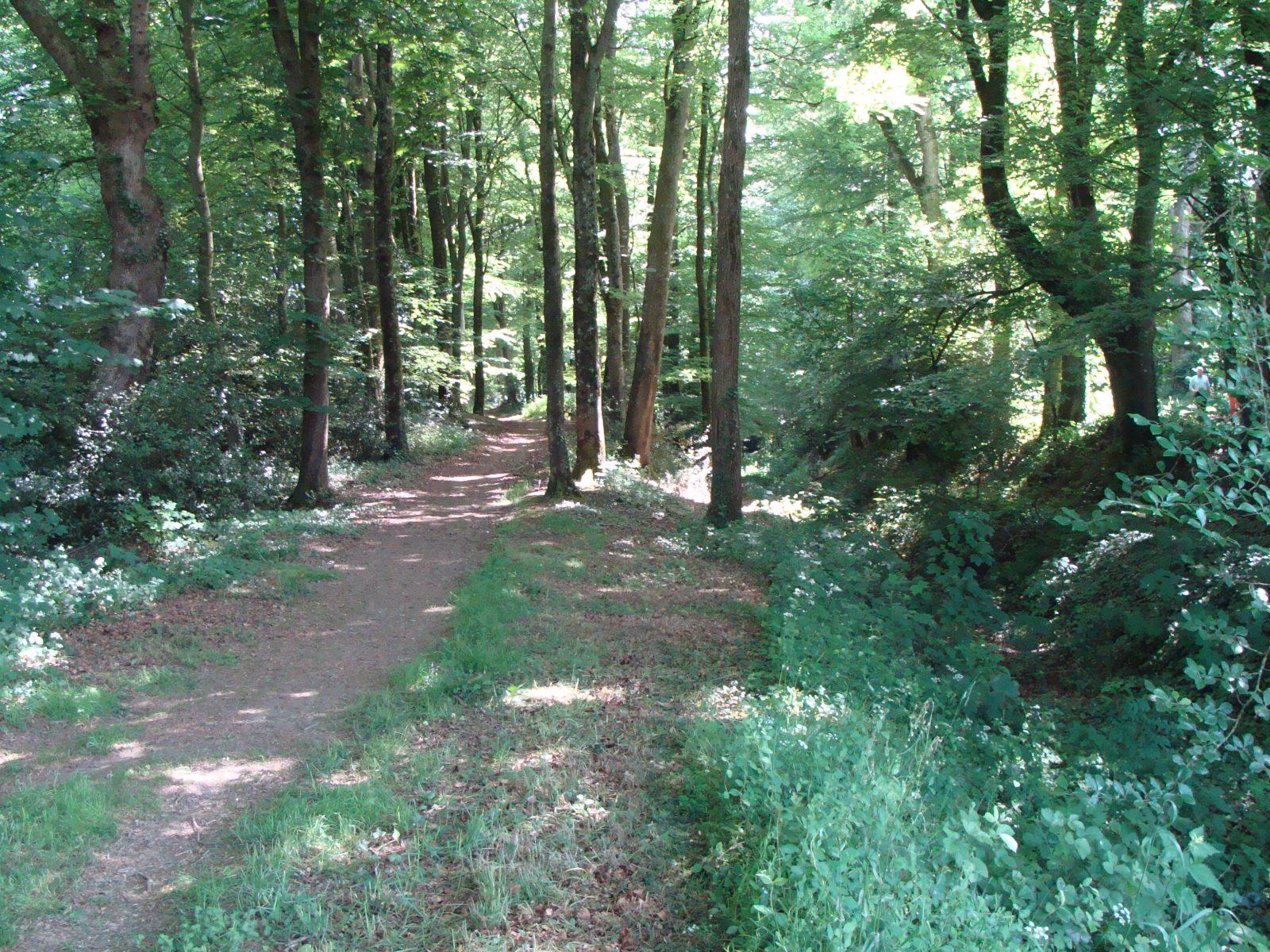Week-end randonnée Rigole d'Hilvern