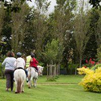 Balade à poney près de la Côte de granit rose