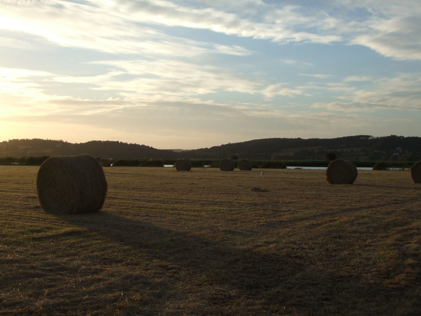 Vacances à la ferme dans le Morbihan