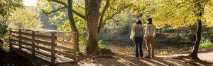 5 idées pour profiter de l'automne en Bretagne